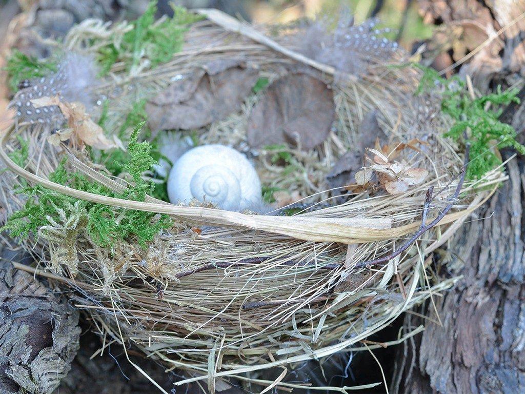 vogelnest aus naturmaterialien DIY Frühlingsdeko: Vogelnest aus Naturmaterialien vogelnest naturmaterial rand 1 1024x768