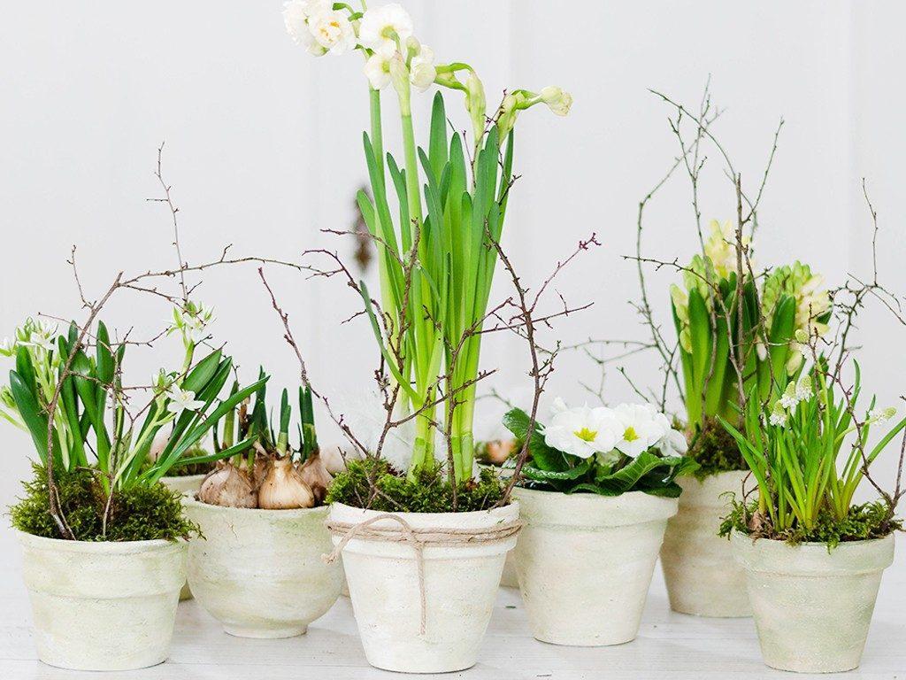 blumentopf im shabby chic look Frühlingsdeko Upcycling-DIY: Blumentopf im Shabby Chic Look selbst machen blumentpfe patinieren 1024x768