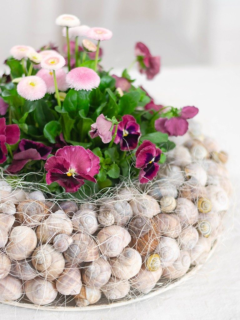Frühlingsdeko DIY: Kranz aus Schneckenhäuschen mit Frühlingsblumen kranz aus schneckenhuschen 13 768x1024