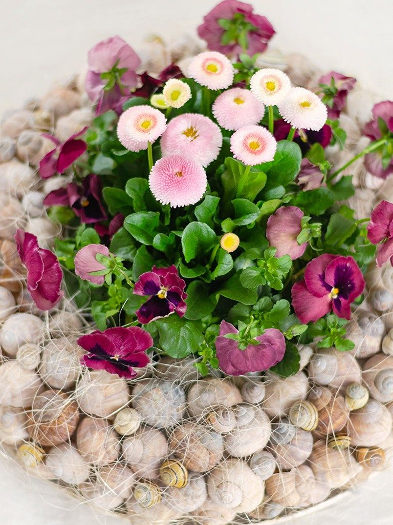 Frühlingsdeko DIY: Kranz aus Schneckenhäuschen mit Frühlingsblumen kranz aus schneckenhuschen 14 768x1024