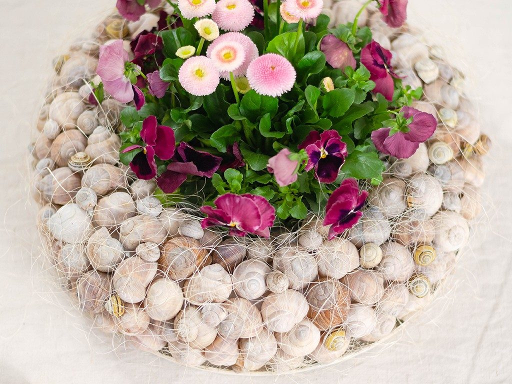 Frühlingsdeko DIY: Kranz aus Schneckenhäuschen mit Frühlingsblumen kranz aus schneckenhuschen 7 1024x768