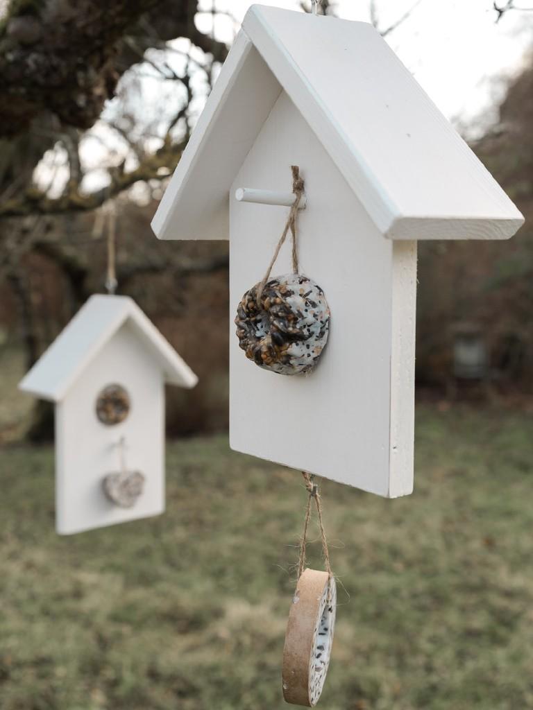 DIY: Vogelhäuschen selber machenDIY: Vogelhäuschen selber machen