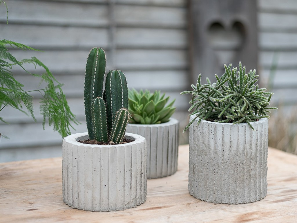 DIY: Betonübertopf selber machen
