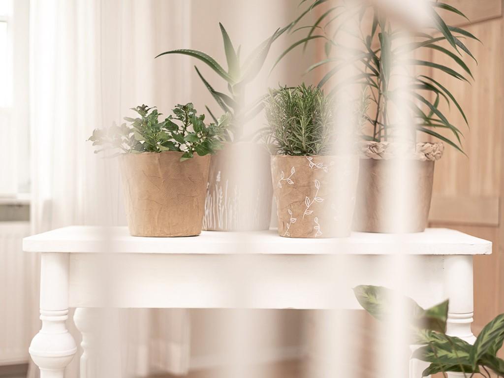 DIY Anleitung für Blumenübertöpfe aus Packpapier