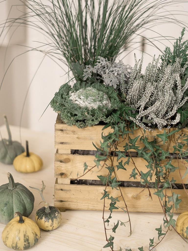 Anleitung für eine herbstlich bepflanzte Holzkiste in Grün-Weiß